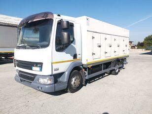 DAF 45.220 SURGELATI ATP 10/2024 - 120QLI camión frigorífico